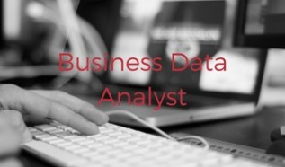 Business Data Analyst